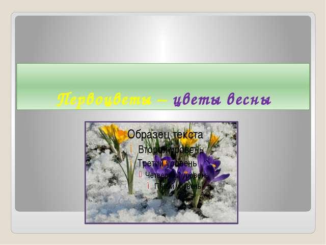 Первоцветы – цветы весны