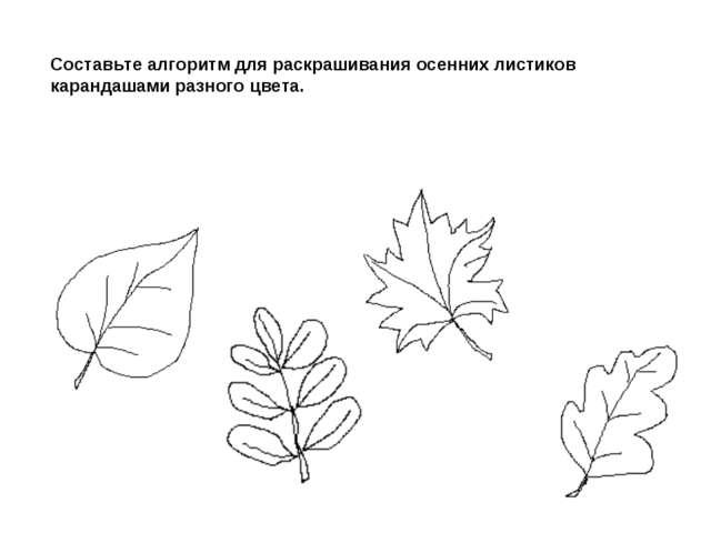 Составьте алгоритм для раскрашивания осенних листиков карандашами разного цве...