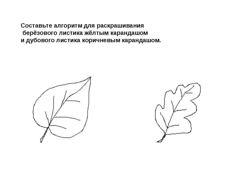 Составьте алгоритм для раскрашивания берёзового листика жёлтым карандашом и д...