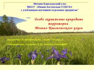 Мегино-Кангаласский улус МБОУ «Нижне-Бестяхская СОШ №1 с улубленным изучением