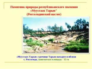 «Муустаах Тарын» урочище Тарын находится вблизи с. Россолода, занимаемая площ