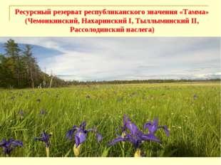 Ресурсный резерват республиканского значения «Тамма» (Чемоикинский, Нахаринск