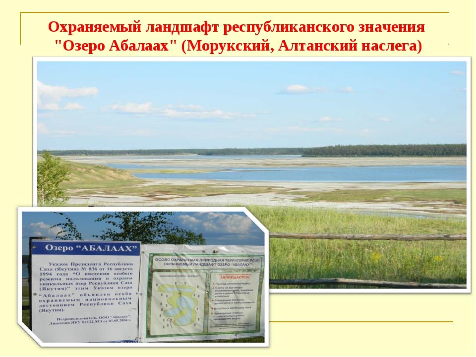 """Охраняемый ландшафт республиканского значения """"Озеро Абалаах"""" (Морукский, Алт..."""