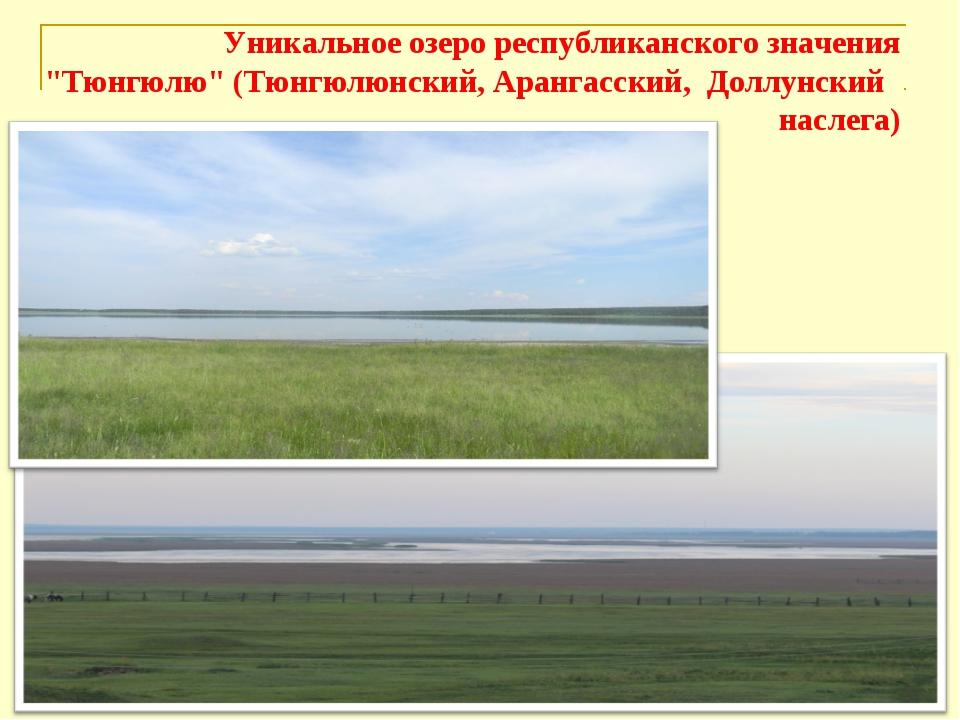 """Уникальное озеро республиканского значения """"Тюнгюлю"""" (Тюнгюлюнский, Арангасск..."""