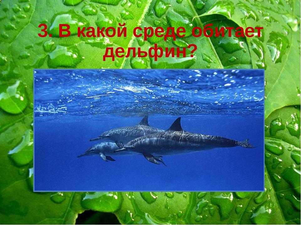3. В какой среде обитает дельфин? В наземно-воздушной В почвенной В водной В...
