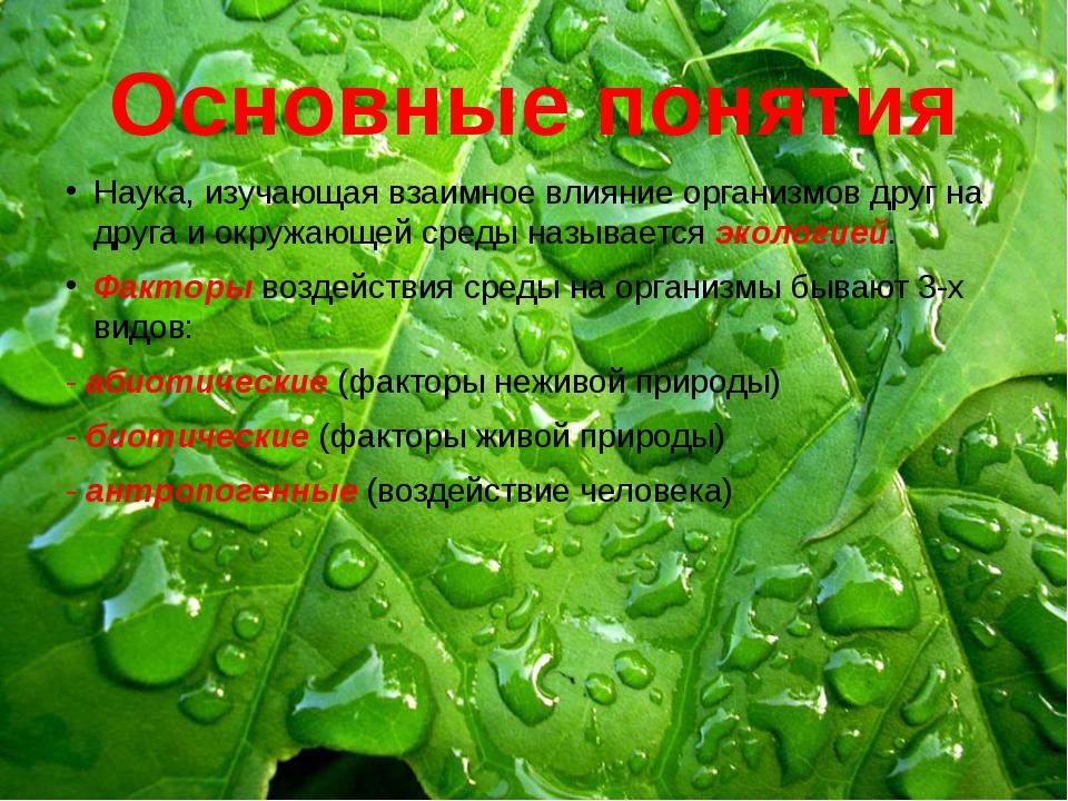 Основные понятия Наука, изучающая взаимное влияние организмов друг на друга и...