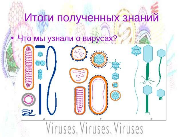 Итоги полученных знаний Что мы узнали о вирусах?