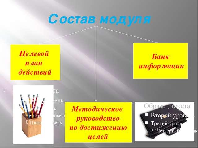 Состав модуля Целевой план действий Методическое руководство по достижению це...
