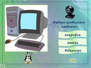 Выбери правильное название: микрофон вебкамера мышка