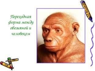 Переходная форма между обезьяной и человеком