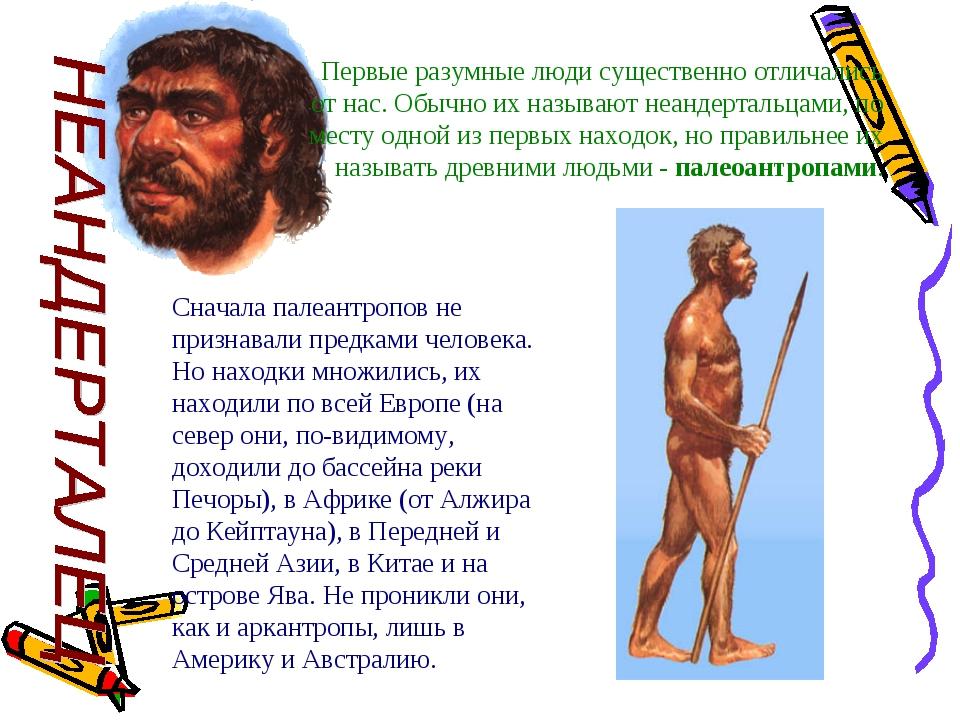 Первые разумные люди существенно отличались от нас. Обычно их называют неанде...