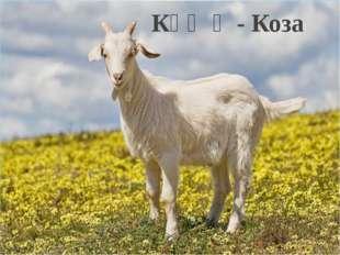 Кәҗә - Коза
