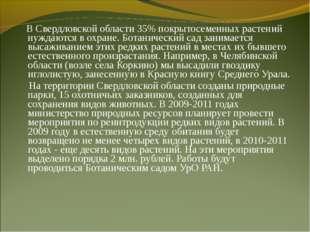 В Свердловской области 35% покрытосеменных растений нуждаются в охране. Бота