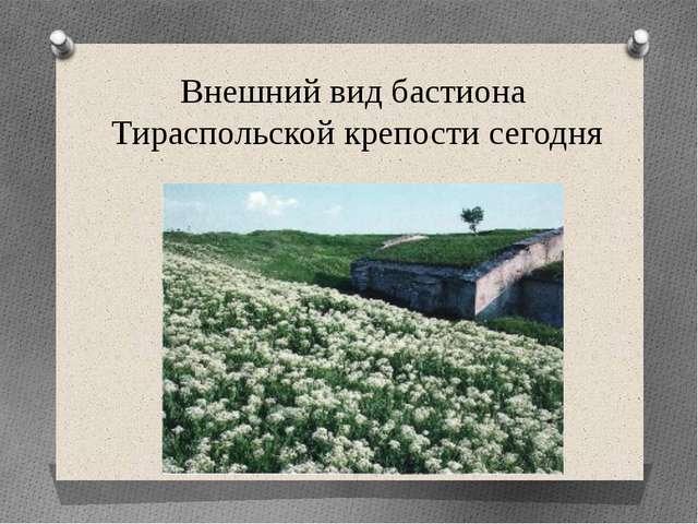 Внешний вид бастиона Тираспольской крепости сегодня