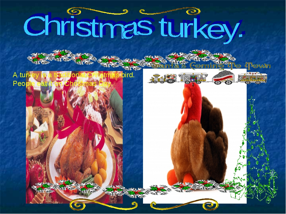 A turkey is a traditional Christmas bird. People eat it on Christmas Day.