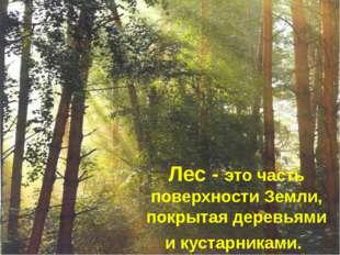 Лес- это часть поверхности Земли, покрытая деревьями и кустарниками.