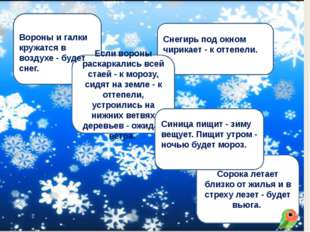 8. images.yandex.ru›картинка снегирь 5.images.yandex.ru›картинка воробей зим