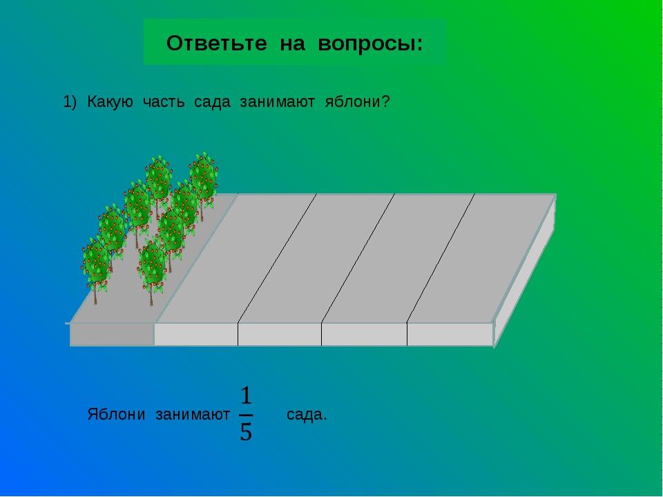 Ответьте на вопросы: 1) Какую часть сада занимают яблони? Яблони занимают сада.