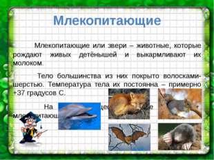 Млекопитающие Млекопитающие или звери – животные, которые рождают живых детён