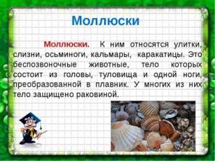 Моллюски Моллюски. К ним относятся улитки, слизни, осьминоги, кальмары, карак