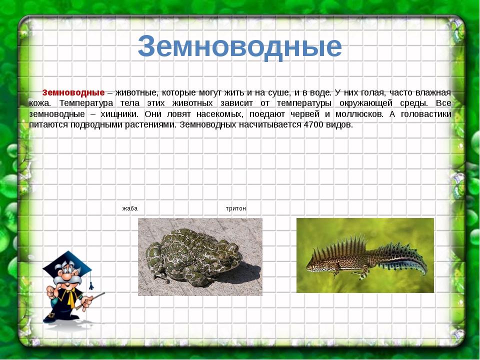 Земноводные Земноводные – животные, которые могут жить и на суше, и в воде. У...