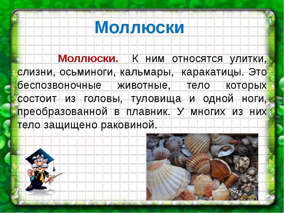 Моллюски Моллюски. К ним относятся улитки, слизни, осьминоги, кальмары, карак...
