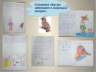 Сочинение «Как мы заботимся о зимующих птицах».