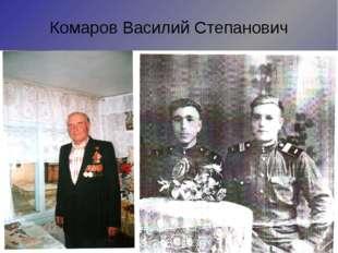 Комаров Василий Степанович Призван в августе 1942 года. Участвовал в обороне
