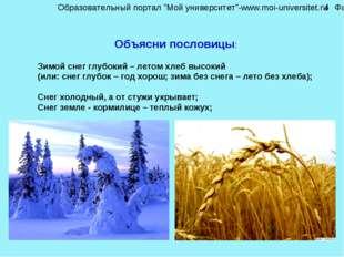 Объясни пословицы: Зимой снег глубокий – летом хлеб высокий (или: снег глубок