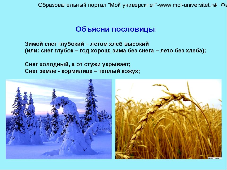 Объясни пословицы: Зимой снег глубокий – летом хлеб высокий (или: снег глубок...