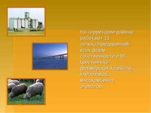 На территории района работают 11 сельхозпредприятий всех форм собственности