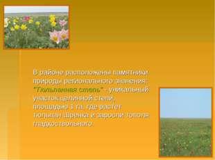 """В районе расположены памятники природы регионального значения: """"Тюльпанная с"""