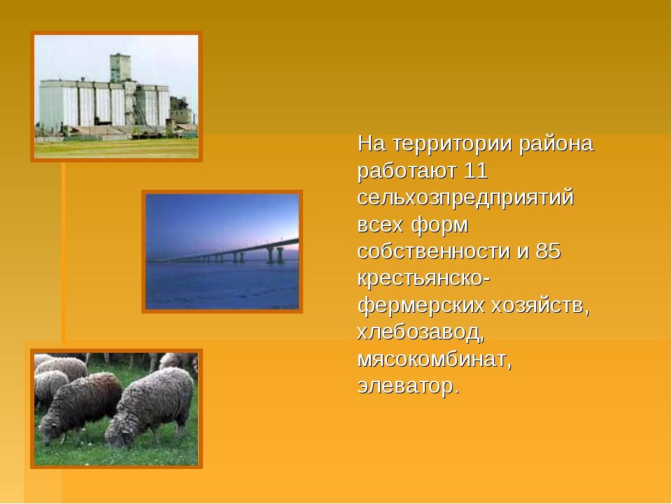 На территории района работают 11 сельхозпредприятий всех форм собственности...