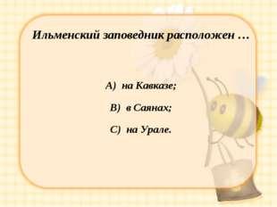 Ильменский заповедник расположен … А) на Кавказе; В) в Саянах; С) на Урале.