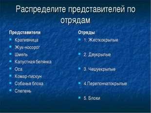 Распределите представителей по отрядам Представители Отряды 1. Жесткокрылые 2