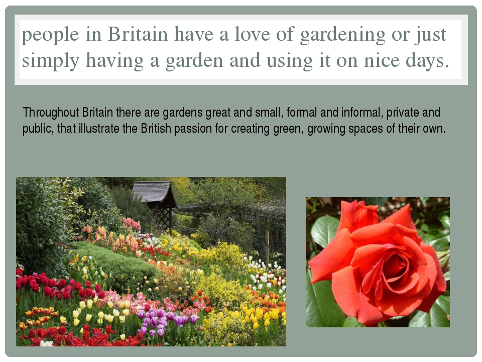 people in Britain have a love of gardening or just simply having a garden and...