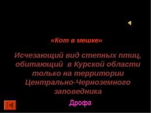 50 баллов. «Кот в мешке» Исчезающий вид степных птиц, обитающий в Курской обл