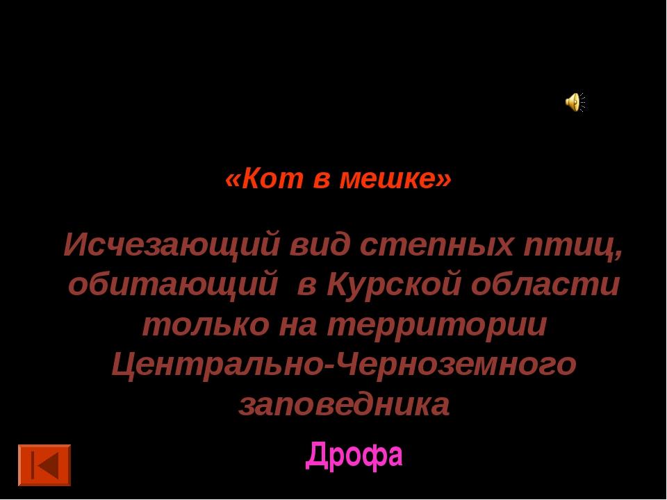 50 баллов. «Кот в мешке» Исчезающий вид степных птиц, обитающий в Курской обл...