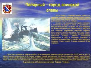 Полярный – город воинской славы СКР-12 «Туман» — сторожевой корабль «Туман»