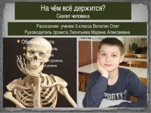 На чём всё держится? Скелет человека Рассказчик- ученик 3 класса Вологин Олег