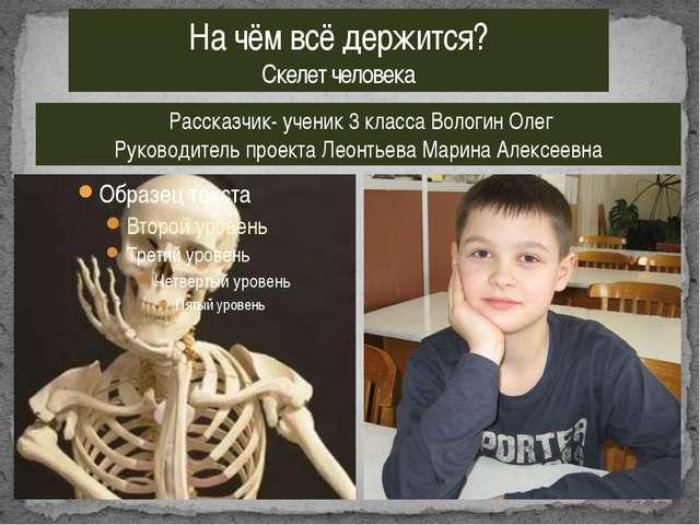 На чём всё держится? Скелет человека Рассказчик- ученик 3 класса Вологин Олег...