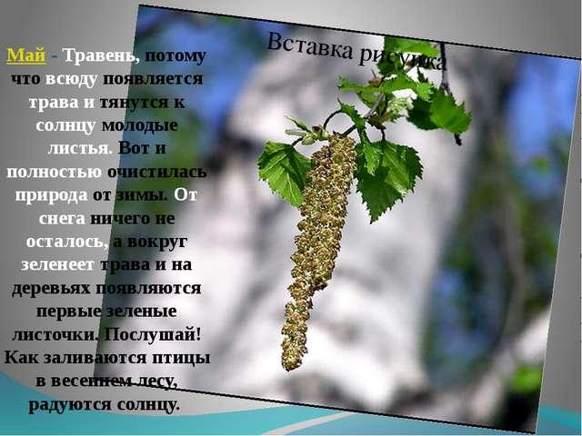 Май- Травень, потому что всюду появляется трава и тянутся к солнцу молодые л...