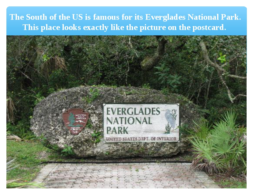 The South of the US is famous for its Everglades National Park. This place lo...