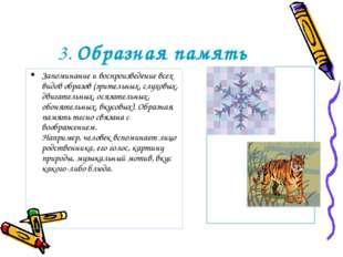 3. Образная память Запоминание и воспроизведение всех видов образов (зрительн