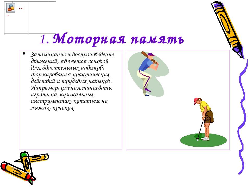 1. Моторная память Запоминание и воспроизведение движений, является основой д...
