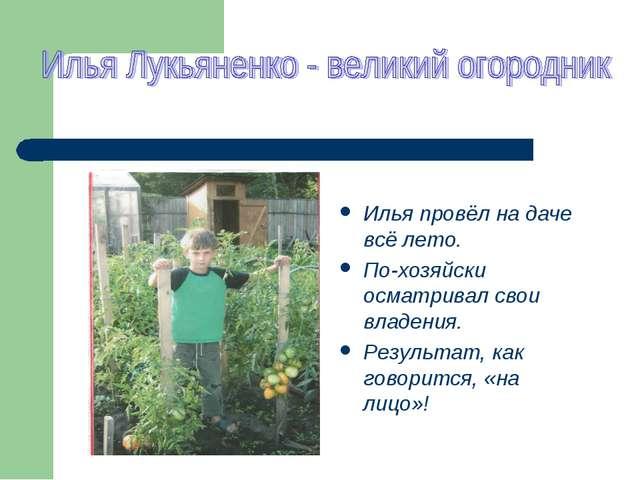 Илья провёл на даче всё лето. По-хозяйски осматривал свои владения. Результа...