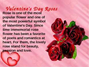 Valentine's Day Roses  Rose is one of the most popular flower and one of th