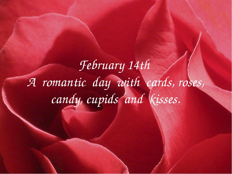 February 14th A romantic day with cards, roses, candy, cupids and kisses.