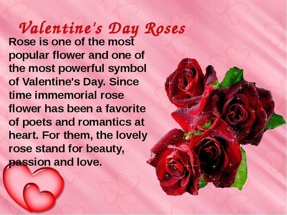 Valentine's Day Roses  Rose is one of the most popular flower and one of th...