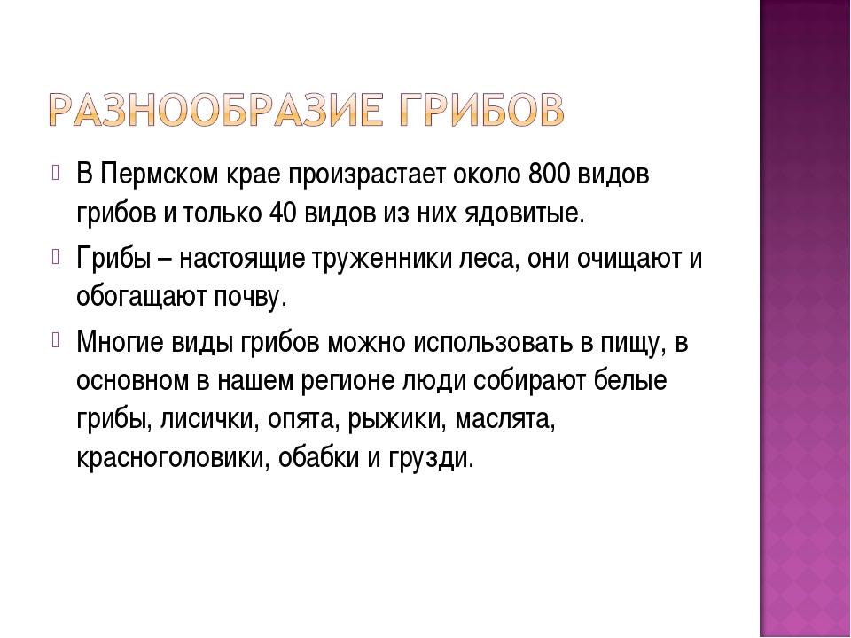В Пермском крае произрастает около 800 видов грибов и только 40 видов из них...